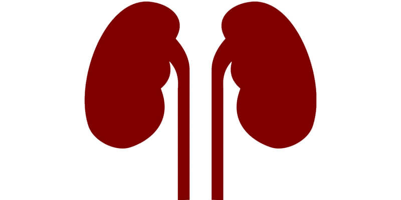 CKD and Kidney Stones: Recognize before it's too late