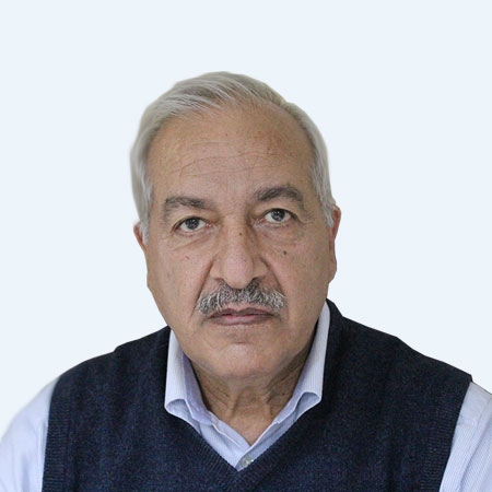Prof. Dr. Wajahat Bangash